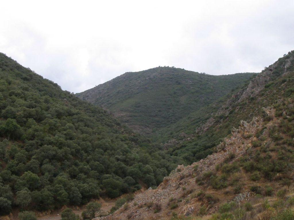 Cabalgatas en los Montes de Toledo